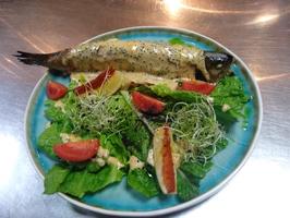 Подкопченая форель под сливочно-сырным соусом
